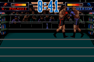 3D World Boxing 8