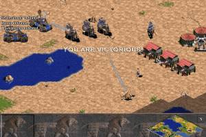 Age of Empires 25