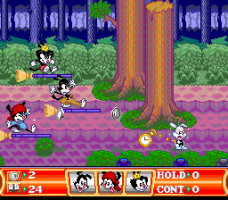 Animaniacs 17