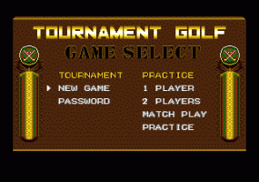 Arnold Palmer Tournament Golf 1