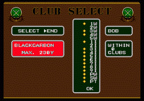 Arnold Palmer Tournament Golf 2