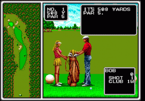 Arnold Palmer Tournament Golf 3