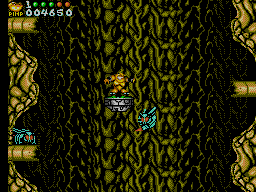 Battletoads in Battlemaniacs abandonware