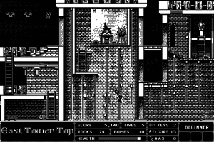 Beyond Dark Castle abandonware