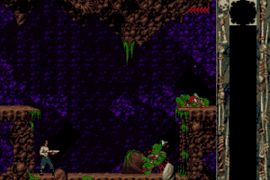 Blackthorne abandonware