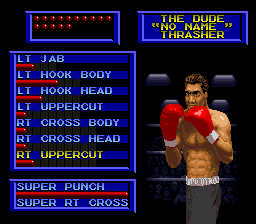 Boxing Legends of the Ring 4