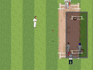 Brian Lara Cricket '96 5