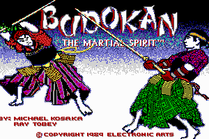 Budokan: The Martial Spirit 0