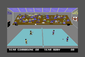 Bump, Set, Spike! Doubles Volleyball abandonware