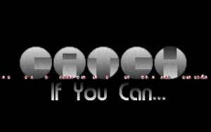 Catch: If You Can! abandonware
