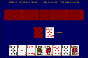 Crazy Eights (1992) abandonware