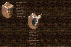Deer Hunter abandonware
