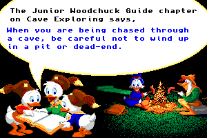 Disney's Duck Tales: The Quest for Gold abandonware