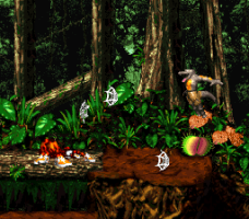 Donkey Kong Country 2: Diddy's Kong Quest 31