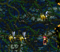 Donkey Kong Country 2: Diddy's Kong Quest 33