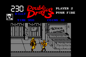 Double Dragon 3: The Rosetta Stone 9