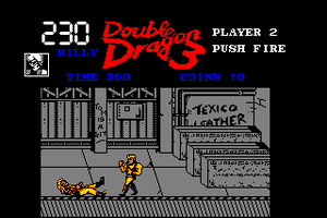 Double Dragon 3: The Rosetta Stone 10