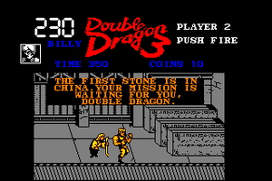 Double Dragon 3: The Rosetta Stone 11
