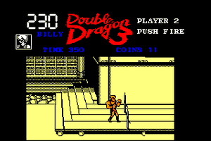 Double Dragon 3: The Rosetta Stone 16
