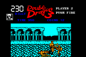 Double Dragon 3: The Rosetta Stone 20