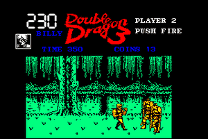 Double Dragon 3: The Rosetta Stone 25