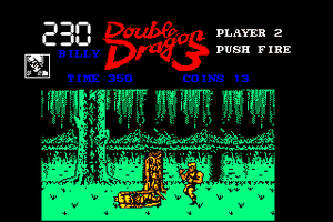 Double Dragon 3: The Rosetta Stone 26