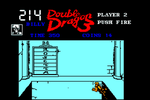 Double Dragon 3: The Rosetta Stone 29