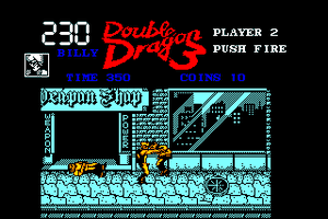 Double Dragon 3: The Rosetta Stone 5