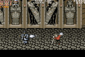 Double Dragon 3: The Rosetta Stone 24