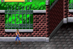 Double Dragon: Fists of Rage abandonware