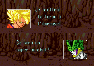 Dragon Ball Z: L'Appel Du Destin 24