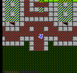 Dragon Warrior 13