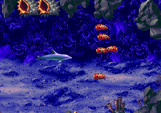 Ecco: The Tides of Time 2