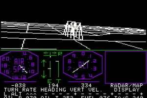 Flight Simulator abandonware