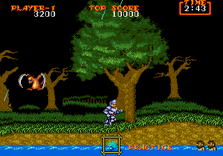 Ghouls 'N Ghosts 17