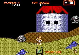 Ghouls 'N Ghosts 25