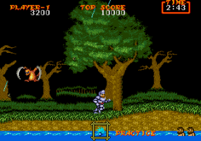 Ghouls 'N Ghosts abandonware