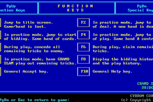 Grand Slam Bridge abandonware