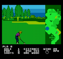 Greg Norman's Golf Power abandonware