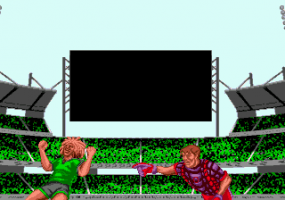 Head-On Soccer abandonware