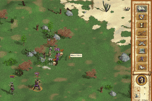 Heroes of Might and Magic IV 9