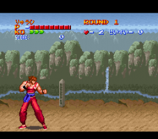 Hiryū No Ken S: Golden Fighter 4