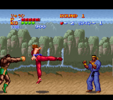 Hiryū No Ken S: Golden Fighter abandonware