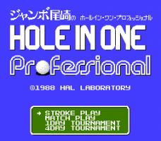 Hole in One Professional 1