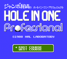 Hole in One Professional 2