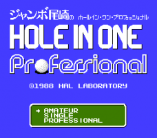 Hole in One Professional 3