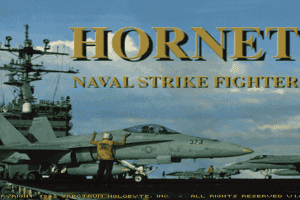Hornet: Naval Strike Fighter 0