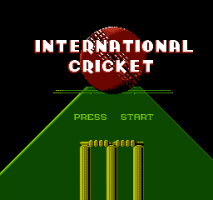International Cricket 0