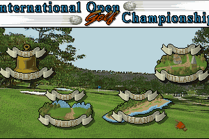International Open Golf Championship 3