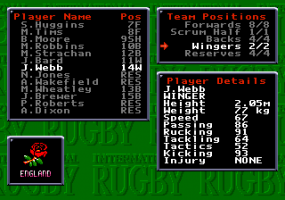 International Rugby 7